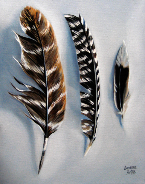 Contemplation: Trio of Feathers by Susanna Pantas