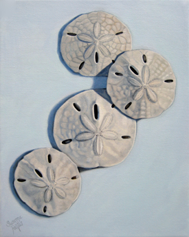 Contemplation: Sand Dollars on Blue by Susanna Pantas