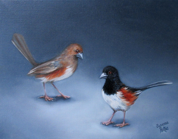 Contemplation: Towhee Pair
